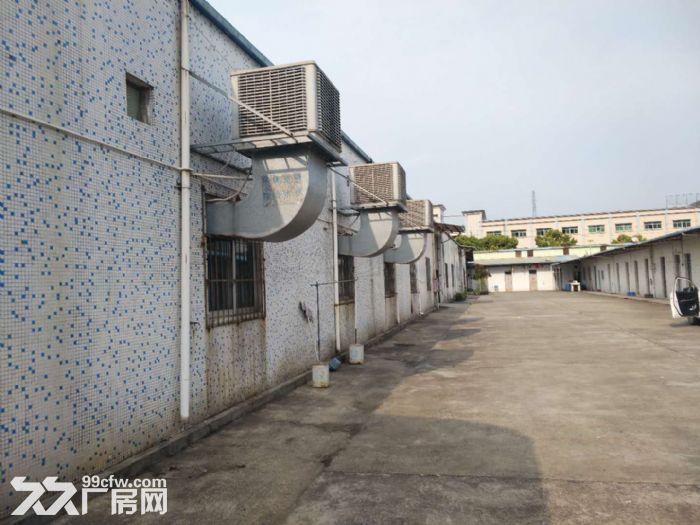 塘厦独院钢构厂房3200平方米任意分租-图(1)