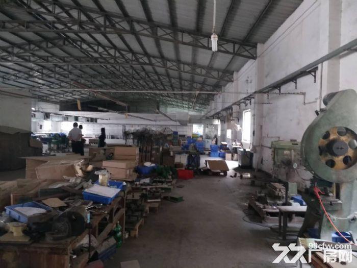 塘厦独院钢构厂房3200平方米任意分租-图(2)