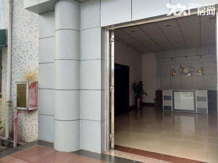 塘厦独院钢构厂房3200平方米任意分租-图(4)