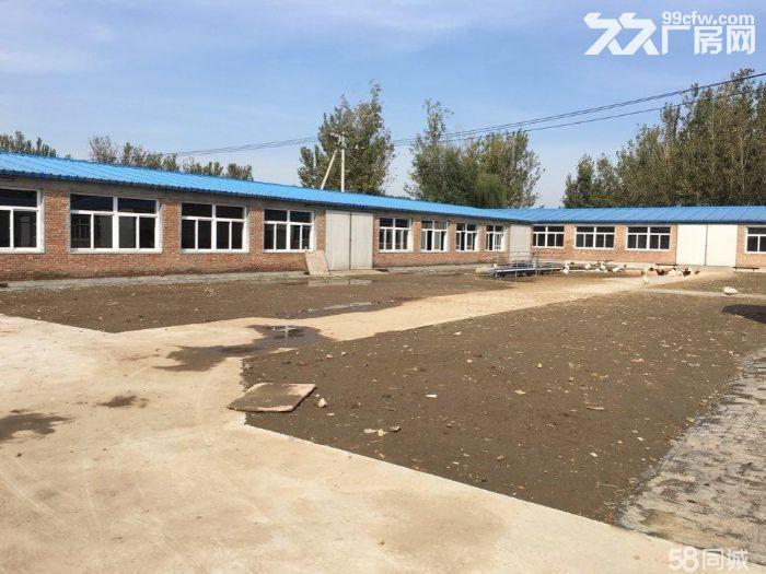 出租,出售!武清崔黄口镇厂房,占地20亩-图(2)