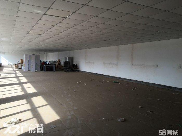 出租,出售!武清崔黄口镇厂房,占地20亩-图(4)