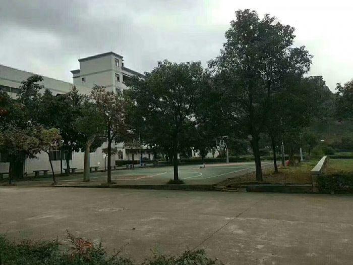 松岗独门独院红本厂房34628平方米-图(5)