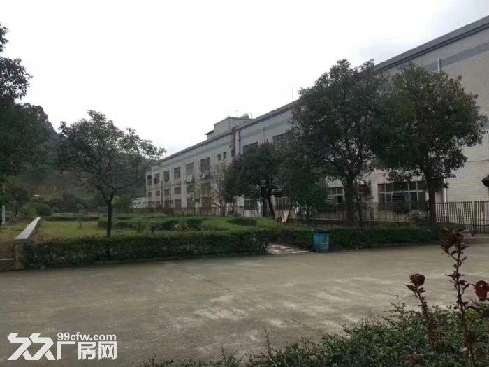 松岗独门独院红本厂房34628平方米-图(6)