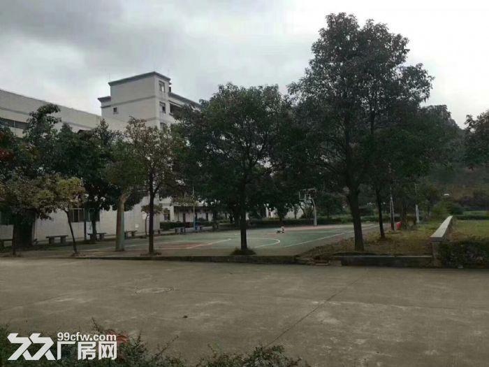 松岗独门独院红本厂房34628平方米-图(8)