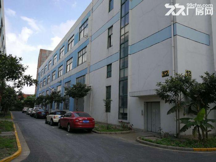 新桥镇新飞路6300平厂房仓库出租,有800平-图(1)