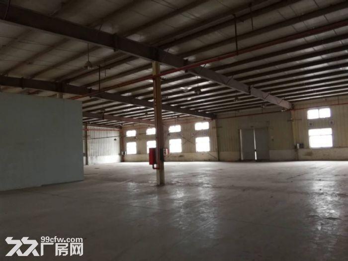 新桥镇新飞路6300平厂房仓库出租,有800平-图(5)