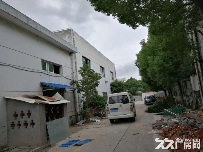松江工业区民强路104地块2500平米厂房招租-图(6)