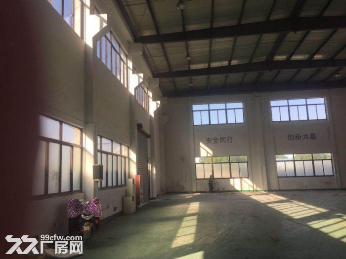 新桥独栋全单层厂房1700平米有10吨行车场地大-图(3)
