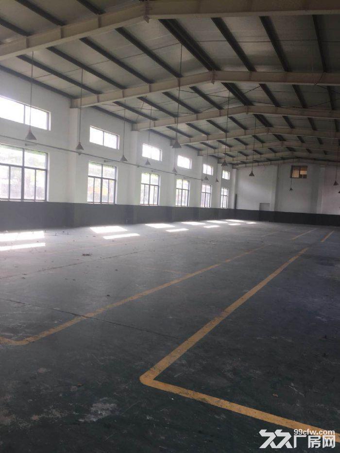 新出10米层高纯单层标准厂房,三证齐全不拆迁-图(3)