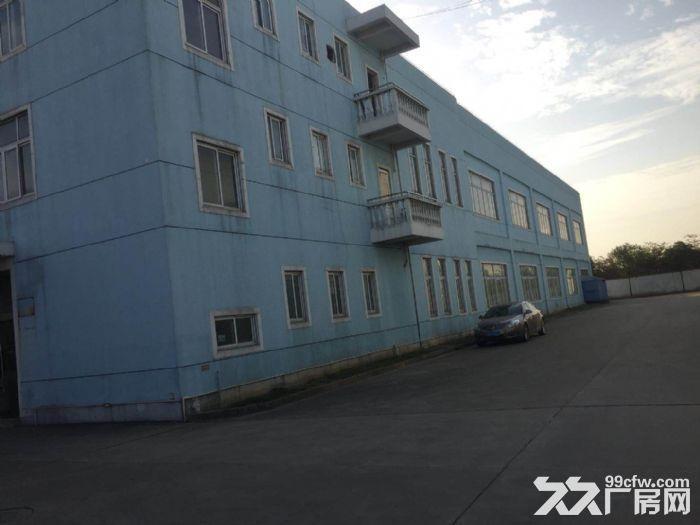 新出10米层高纯单层标准厂房,三证齐全不拆迁-图(2)