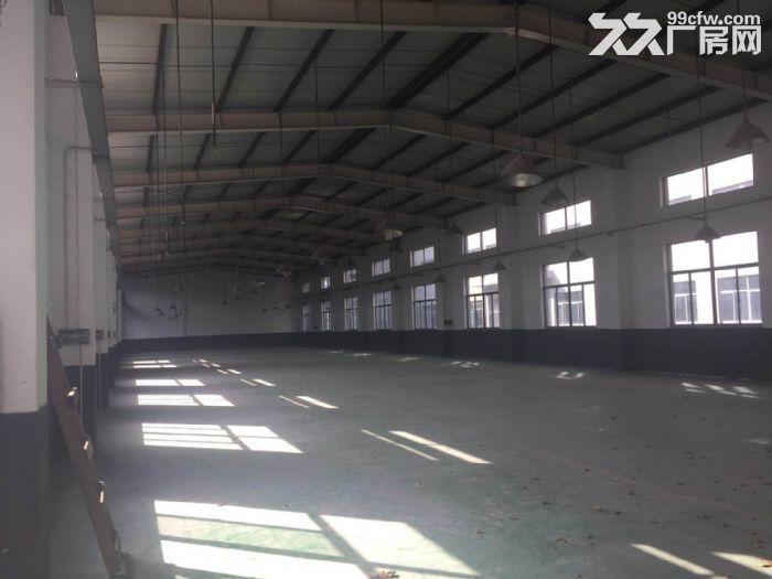 新出10米层高纯单层标准厂房,三证齐全不拆迁-图(4)