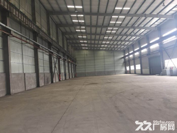 新出10米层高纯单层标准厂房,三证齐全不拆迁-图(5)