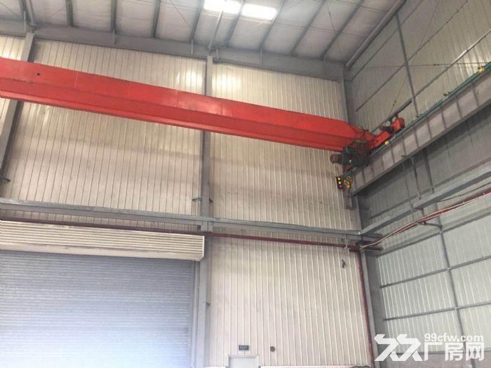 新出10米层高纯单层标准厂房,三证齐全不拆迁-图(6)