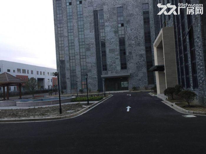 松江区泗泾镇柴火空间高新科技园厂房出租-图(5)
