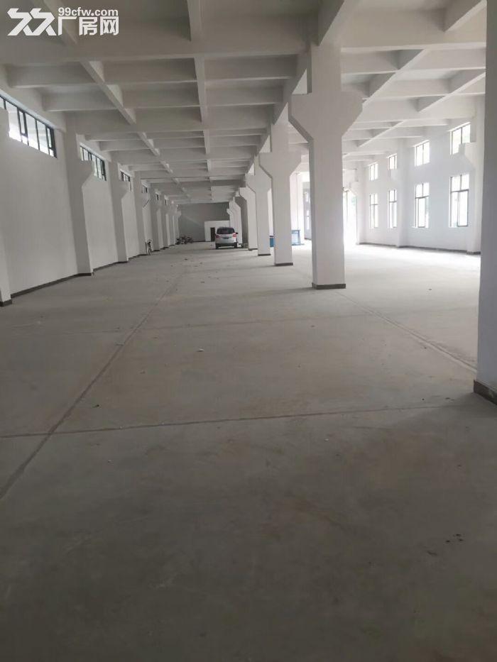 出售东莞塘厦带天河12000平带红本厂房-图(1)