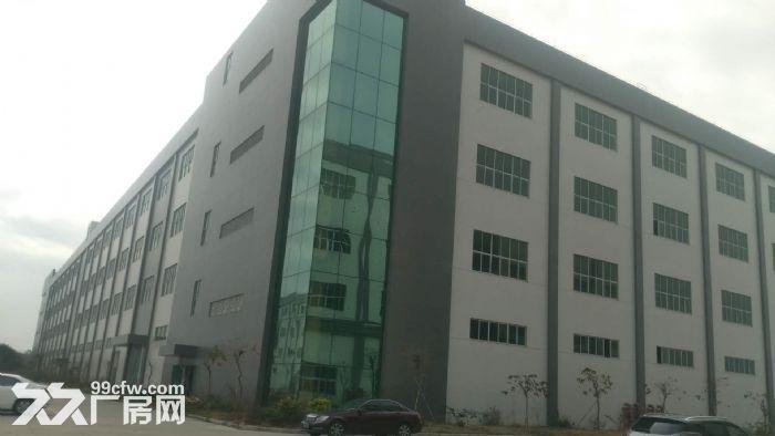 花东金田工业区附近45566平米厂房出租,证件齐全,有整体环评-图(2)