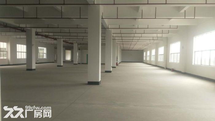 花东金田工业区附近45566平米厂房出租,证件齐全,有整体环评-图(3)