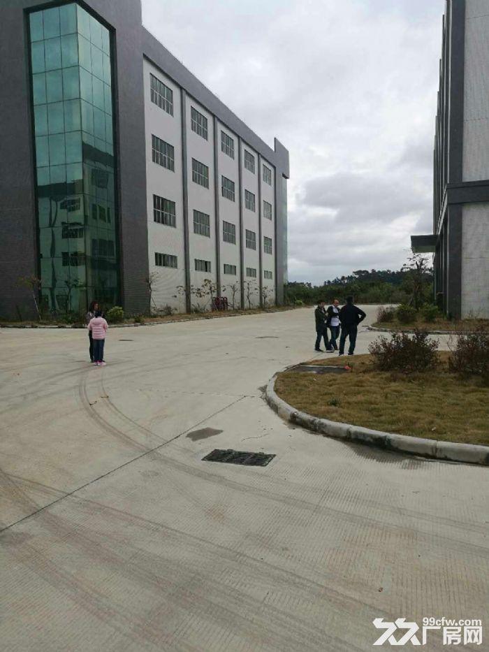 白云机场3公里高端喷淋厂房20065平米出租-图(1)