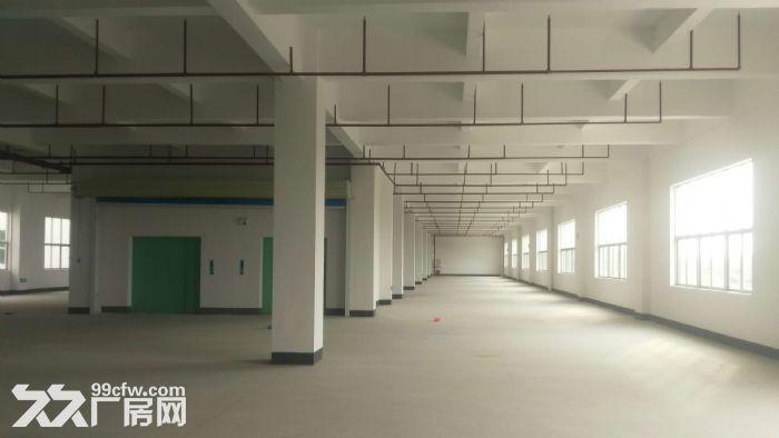 白云机场3公里高端喷淋厂房20065平米出租-图(3)