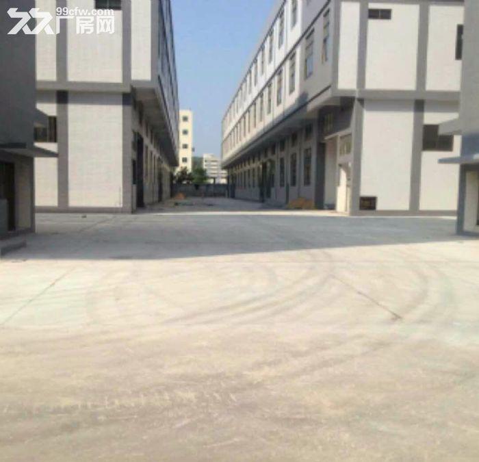 增城新塘厂房17200平米出租,红本房产证,消防合格-图(3)