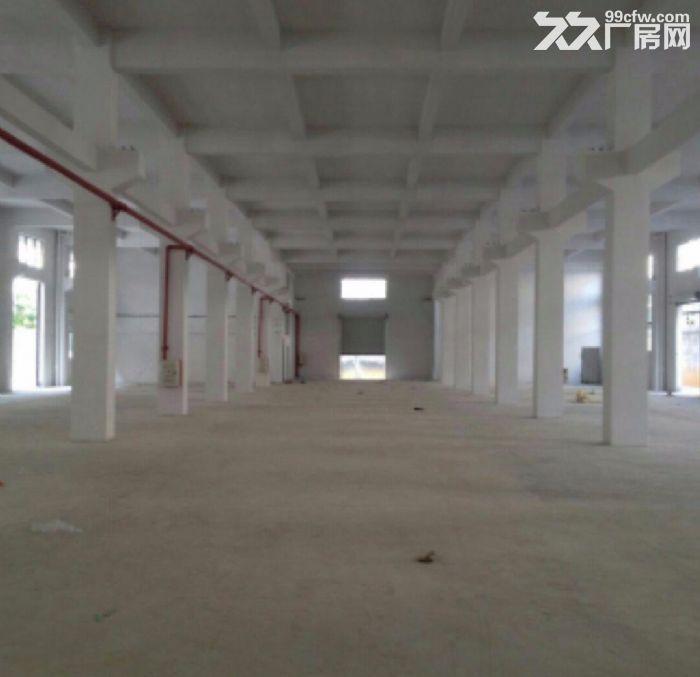 增城新塘厂房17200平米出租,红本房产证,消防合格-图(2)