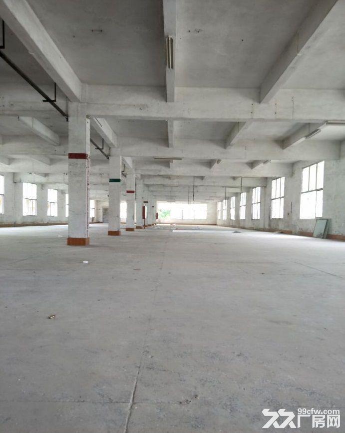 新塘沙埔厂房8600平米出租丨交通便利,易招工-图(1)