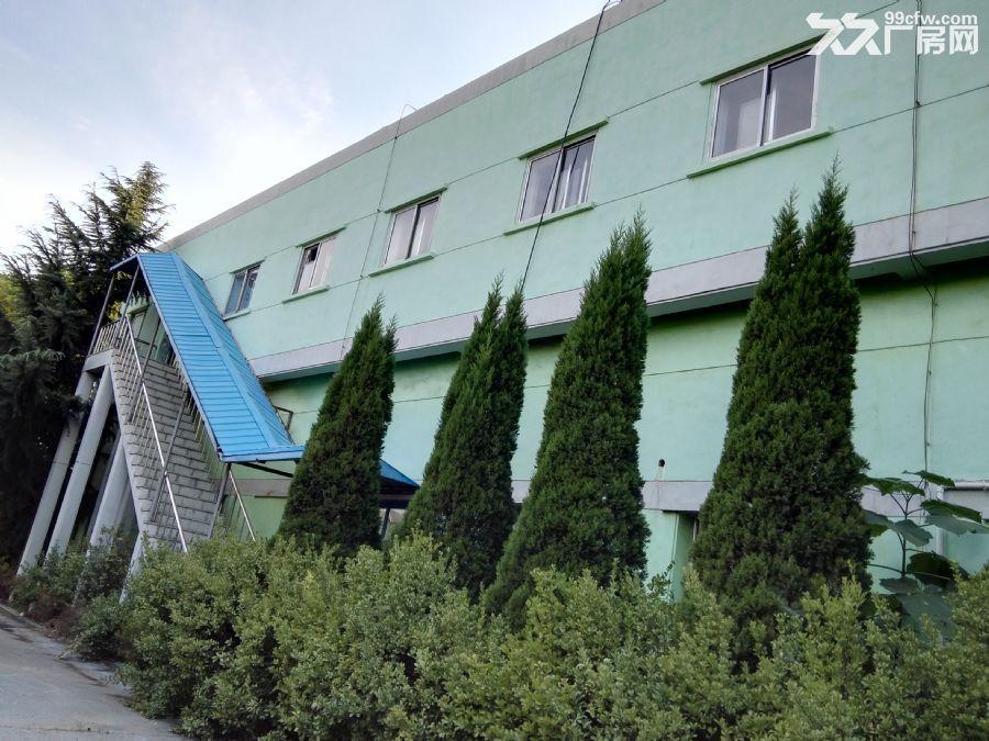 胶州市大朱戈217省道旁环境优美厂房出租-图(1)