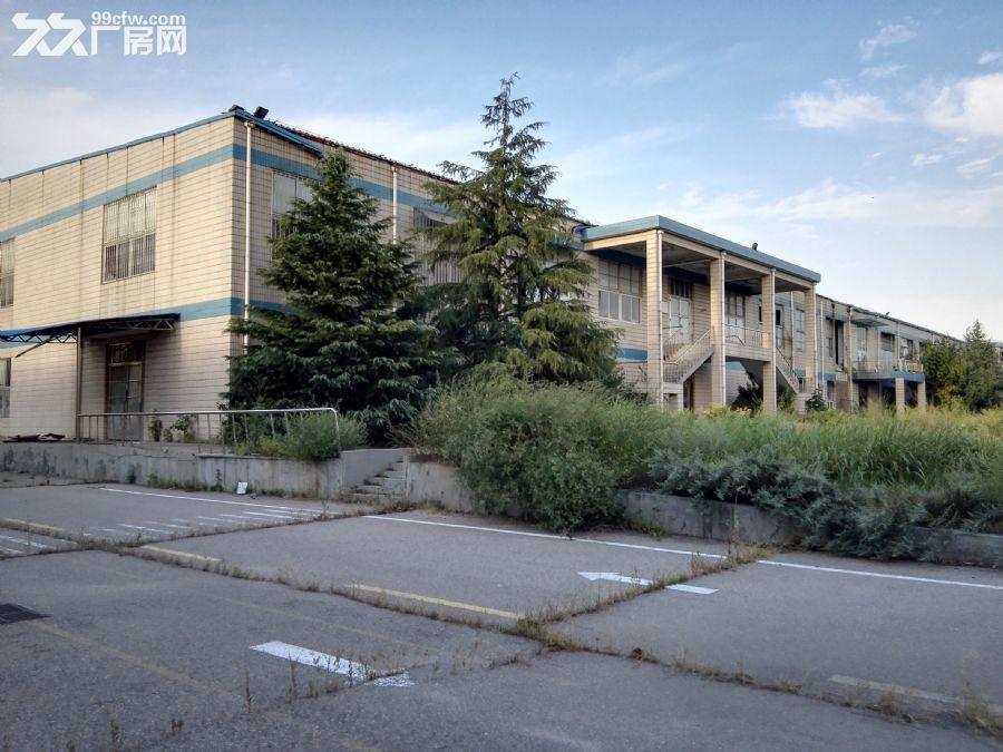 胶州市大朱戈217省道旁环境优美厂房出租-图(4)
