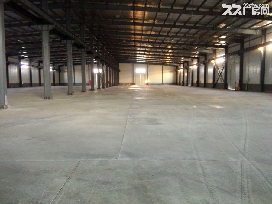 胶州市大朱戈217省道旁环境优美厂房出租-图(6)