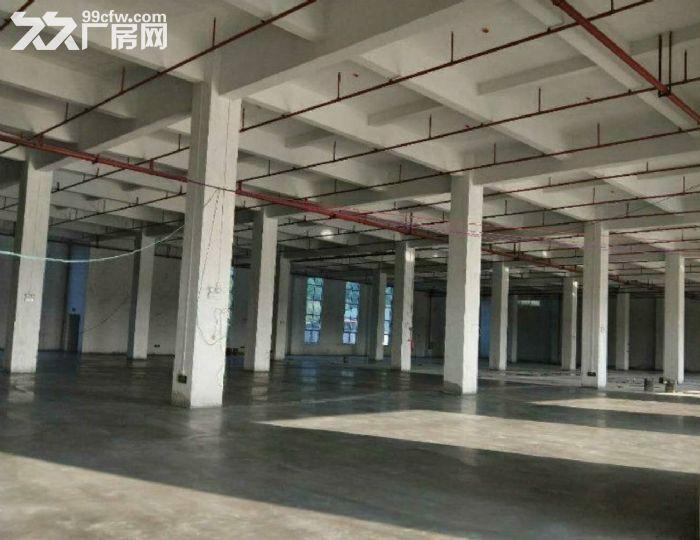 花都花东厂房22720平米出租,8个大货梯,高速、省道环绕-图(2)