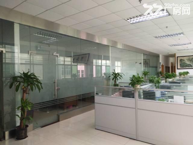 观澜梅关高速路口单一层500平带装修厂房-图(2)