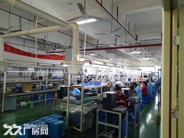 观澜梅关高速路口单一层500平带装修厂房-图(3)