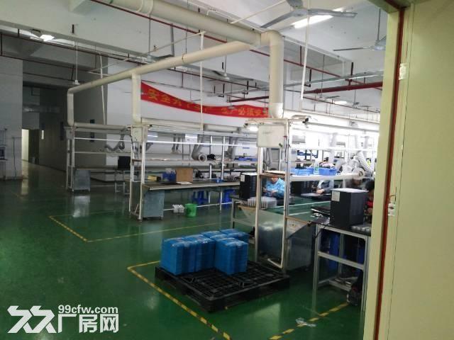 观澜梅关高速路口单一层500平带装修厂房-图(4)