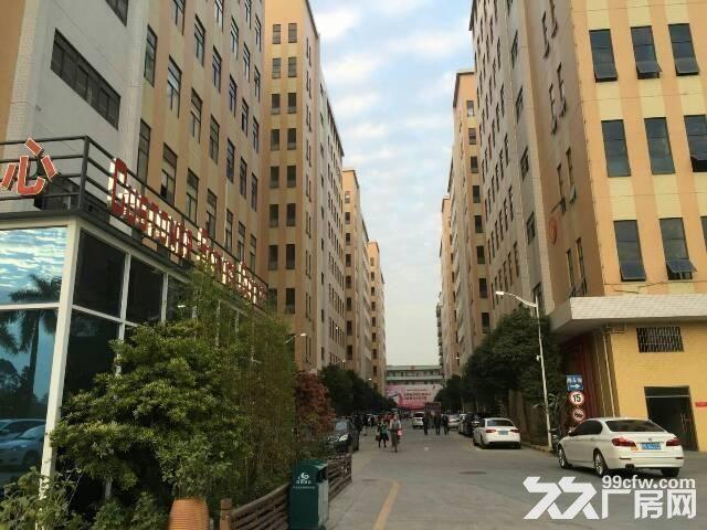 楼上500平公明北环大工业园带电梯带装修-图(3)