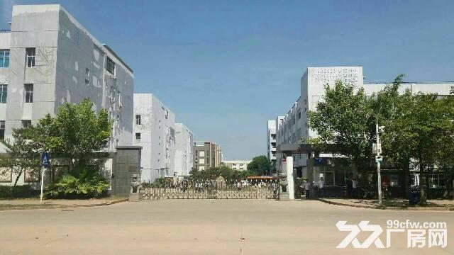 红本厂房16000平米福永带花园式厂房带电梯带装修-图(1)