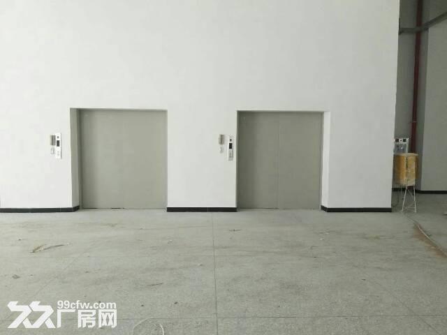 红本厂房16000平米福永带花园式厂房带电梯带装修-图(2)