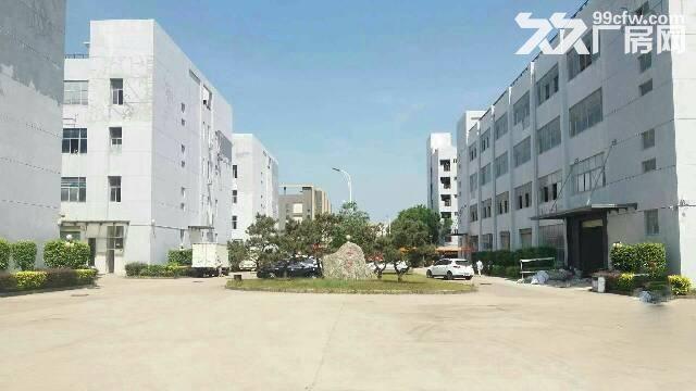 红本厂房16000平米福永带花园式厂房带电梯带装修-图(3)