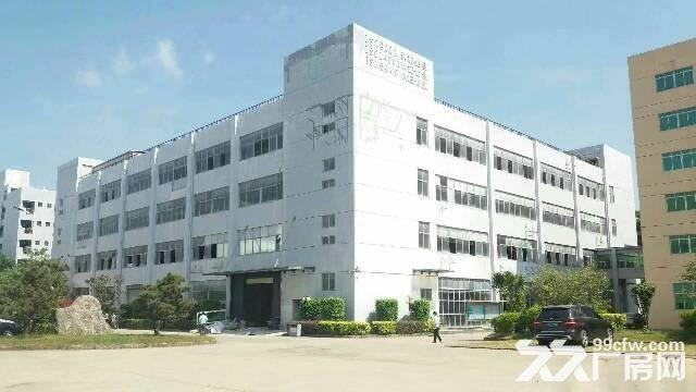 红本厂房16000平米福永带花园式厂房带电梯带装修-图(4)