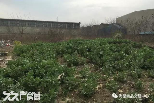 公司出售土地江阴市云亭镇云新村4395平米土地-图(2)