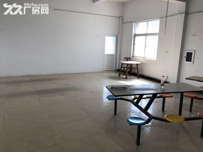 东部新城附近办公场地+仓库一体出租,适合电子商务办公+仓库-图(3)