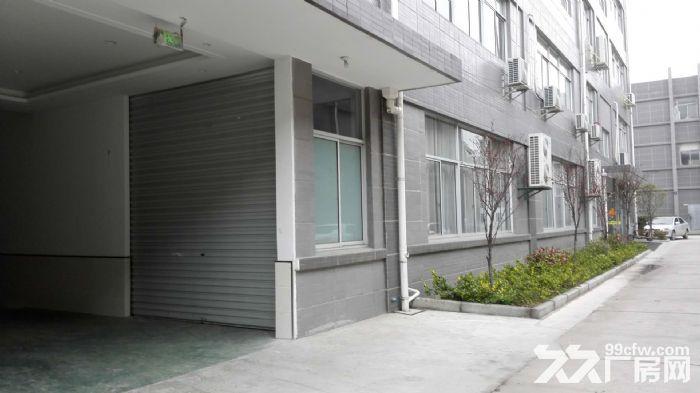汤汪食品工业园500平一楼厂房仓库出租-图(3)