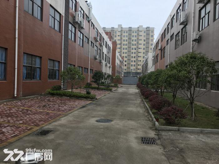 低价出售高新区南昌佳海产业园精装创业孵化园(办公+生产)-图(7)