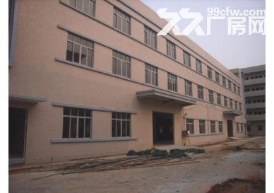东莞市麻涌楼房5000平方楼房1栋3层出租-图(1)