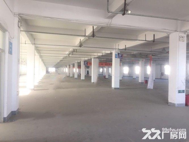 天津市武清区10000平厂库房-图(1)