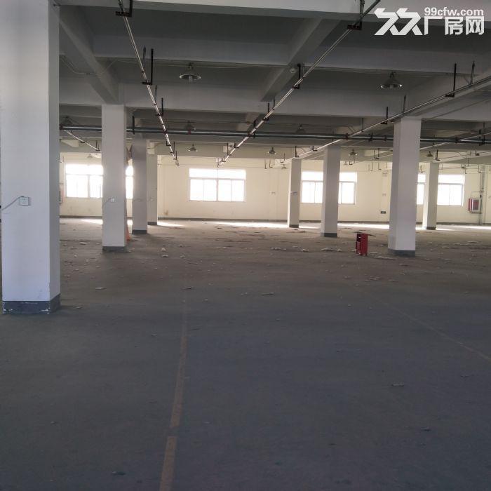 天津市武清区10000平厂库房-图(5)