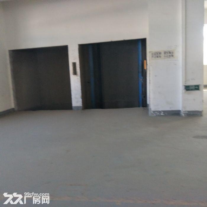 天津市武清区10000平厂库房-图(6)