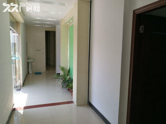 桂城夏西一环辅道旁1000平方厂房(仓库)出租-图(2)