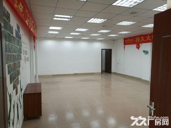 桂城夏西一环辅道旁1000平方厂房(仓库)出租-图(3)