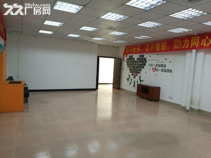 桂城夏西一环辅道旁1000平方厂房(仓库)出租-图(5)