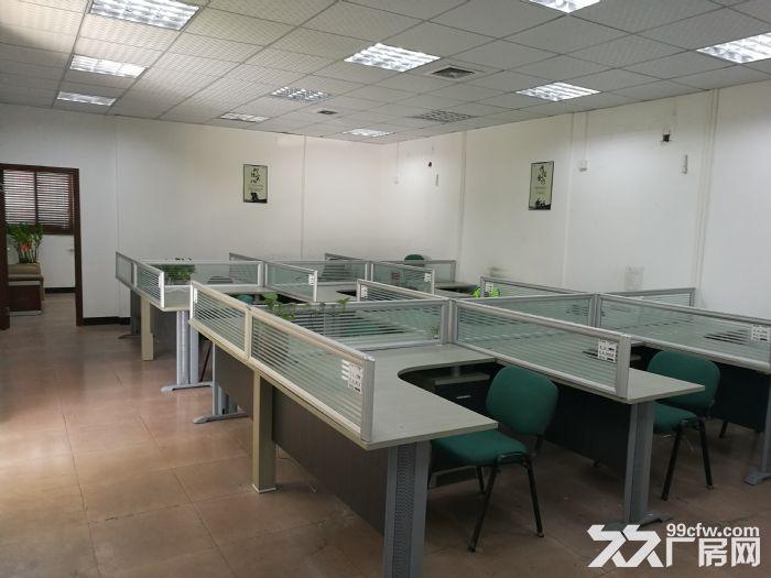 桂城夏西一环辅道旁1000平方厂房(仓库)出租-图(8)